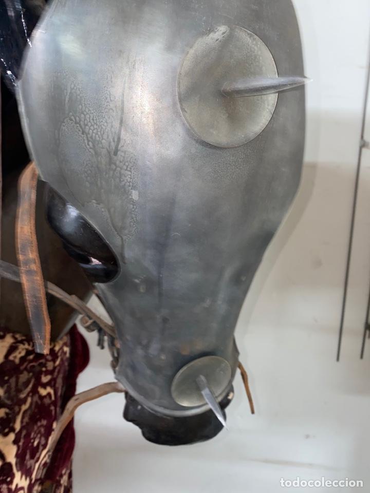 Varios objetos de Arte: CABALLO DE CARTON PIEDRA CON ARMADURA Y LANZA. TAMAÑO REAL. PRINCIPIOS S.XX. - Foto 29 - 248675385