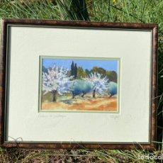 """Varios objetos de Arte: CUADRO PAISAJE """"COULEURS DE PRINTEMPS"""" TÉCNICA PASTEL SECO - ANNE MARIE RUGGERI. Lote 253454315"""