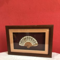 Varios objetos de Arte: CUADRO CON ABANICO EN SU INTERIOR. Lote 253507545