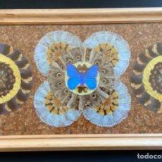 Varios objetos de Arte: CUADRO MARIPOSAS (A LA MANERA DAMIEN HIRST). Lote 264359994