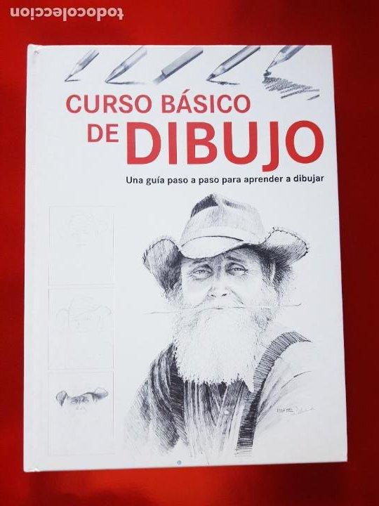 Varios objetos de Arte: LIBRO-CURSO BÁSICO DE DIBUJO-CATALINA REINA-ILUS BOOKS-UNA GUÍA PASO A PASO PARA APRENDES A DIBUJAR - Foto 5 - 285622688