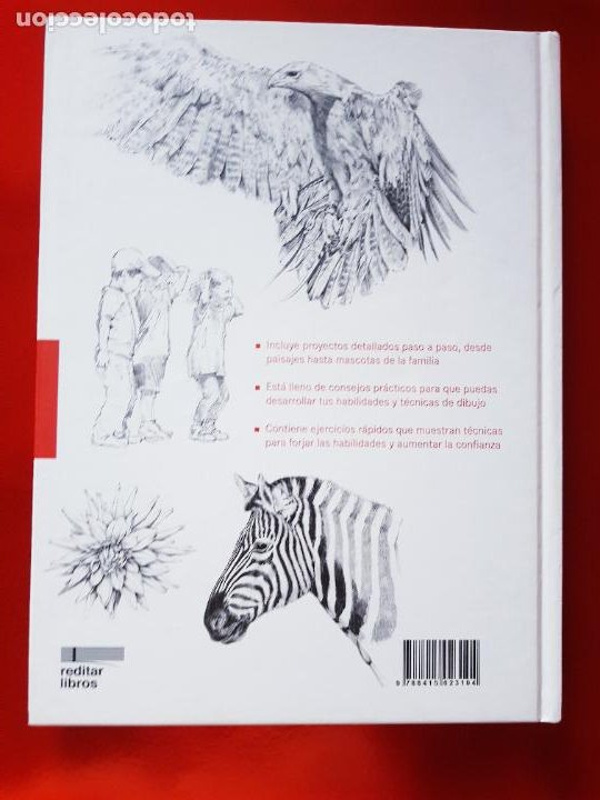 Varios objetos de Arte: LIBRO-CURSO BÁSICO DE DIBUJO-CATALINA REINA-ILUS BOOKS-UNA GUÍA PASO A PASO PARA APRENDES A DIBUJAR - Foto 4 - 285622688