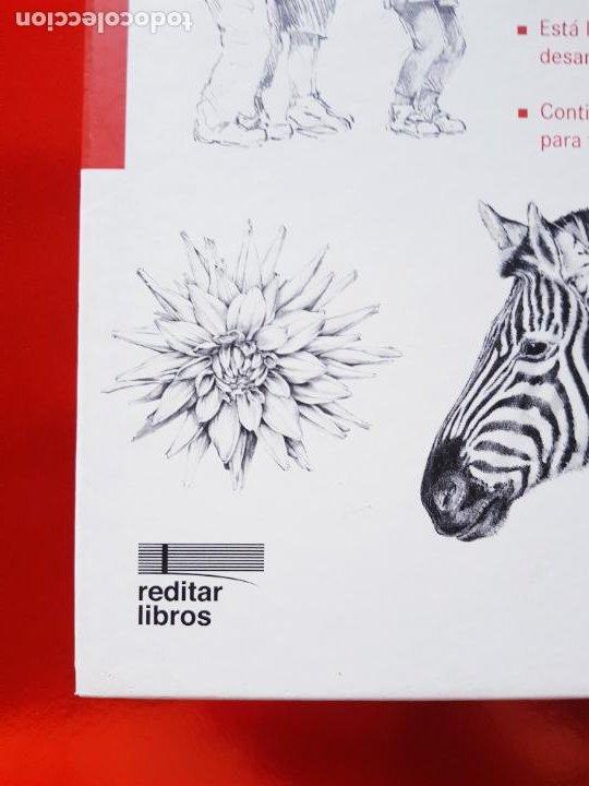Varios objetos de Arte: LIBRO-CURSO BÁSICO DE DIBUJO-CATALINA REINA-ILUS BOOKS-UNA GUÍA PASO A PASO PARA APRENDES A DIBUJAR - Foto 7 - 285622688