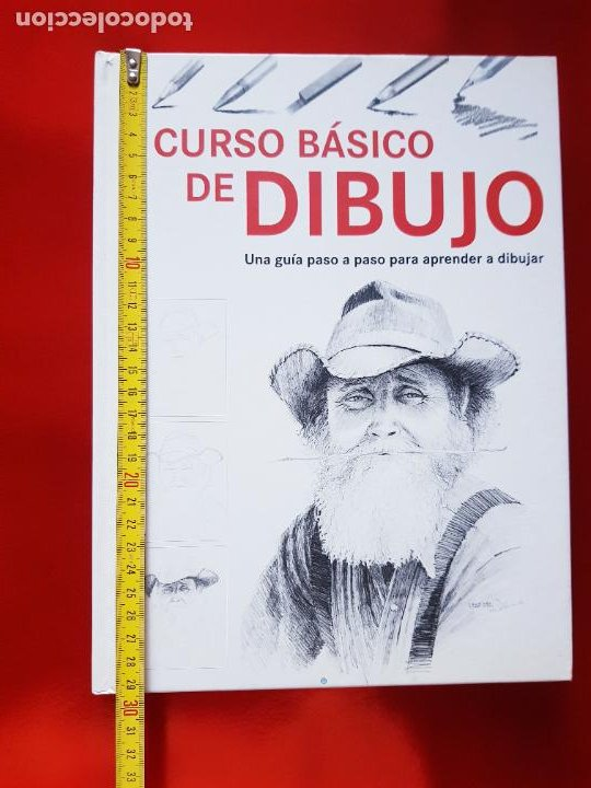 Varios objetos de Arte: LIBRO-CURSO BÁSICO DE DIBUJO-CATALINA REINA-ILUS BOOKS-UNA GUÍA PASO A PASO PARA APRENDES A DIBUJAR - Foto 24 - 285622688