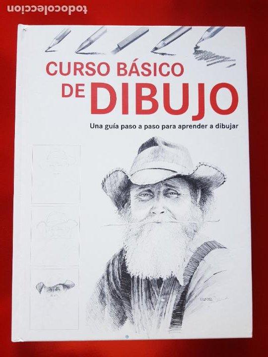 LIBRO-CURSO BÁSICO DE DIBUJO-CATALINA REINA-ILUS BOOKS-UNA GUÍA PASO A PASO PARA APRENDES A DIBUJAR (Arte - Varios Objetos de Arte)