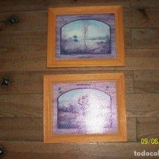 Varios objetos de Arte: PAREJA DE CUADROS-MOTIVOS PAISAJES. Lote 286191083
