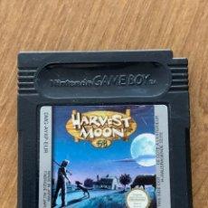 Videojuegos y Consolas: HARVEST MOON GAME BOY COLOR. Lote 218256766