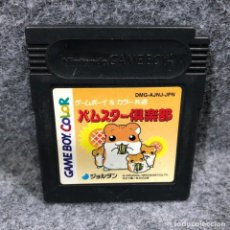 Videojuegos y Consolas: HAMSTER CLUB NINTENDO GAME BOY COLOR GBC. Lote 241511760