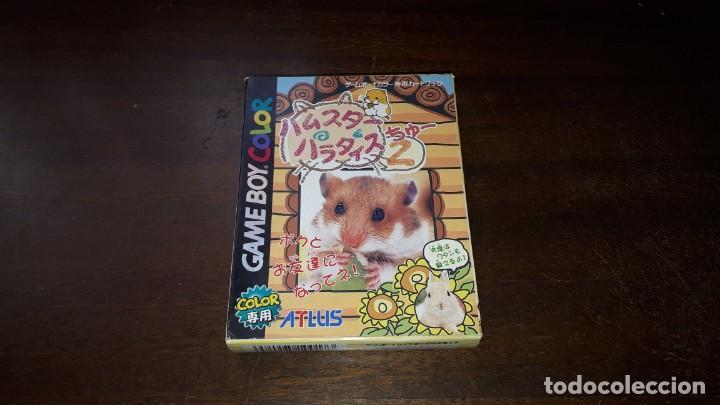 NINTENDO GAMEBOY COLOR HUMSTER PARADISE 2 JAPÓN (Juguetes - Videojuegos y Consolas - Nintendo - GameBoy Color)