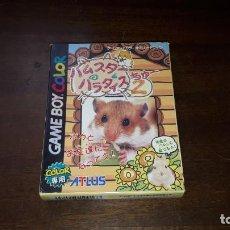Videogiochi e Consoli: NINTENDO GAMEBOY COLOR HUMSTER PARADISE 2 JAPÓN. Lote 261518685