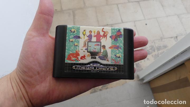 Videojuegos y Consolas: ART ALIVE SEGA MEGA DRIVE PAL MEGADRIVE GENESIS CARTUCHO - Foto 3 - 287771688