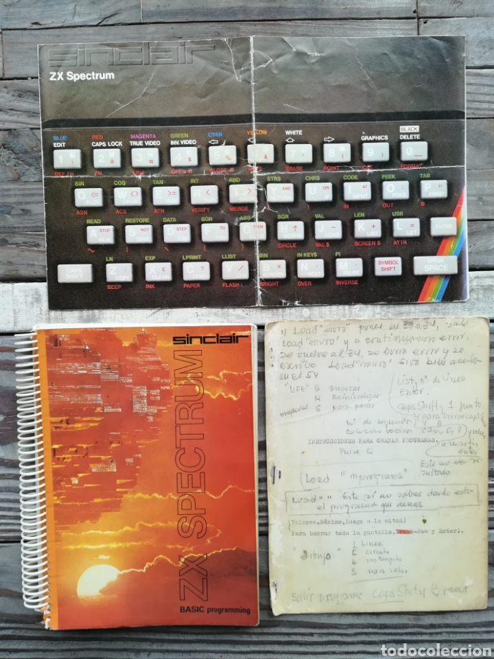 SPECTRUM SINCLAIR ZX BASIC PROGRAMMING (Juguetes - Videojuegos y Consolas - Spectrum)