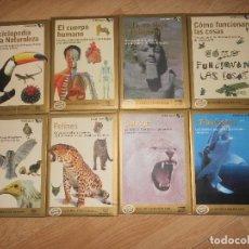 Videojuegos y Consolas: GOLD SERIE / COMPLETA - 8 PC / CD-ROM - ZETA MULTIMEDIA - AVES / FELINOS / TIBURONES / CUERPO HUMANO. Lote 194591521