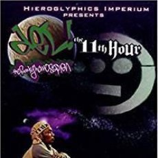 Vídeos y DVD Musicales: DEL THE FUNKY HOMOSAPIEN - THE 11TH HOUR - DVD - NTSC. Lote 183996248