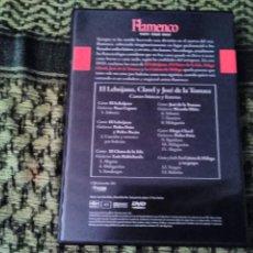 Vídeos y DVD Musicales: EL LEBRIJANO , CLAVEL Y JOSÉ DE LA TOMASA. CANTES BÁSICOS Y FESTEROS. EDICIÓN DE 2005. Lote 194071020