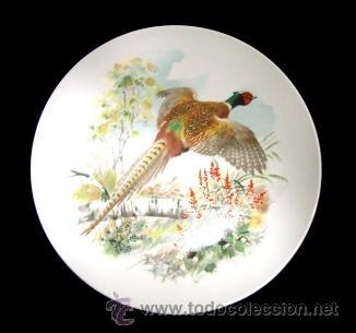 PLATO PORCELANA - FAISAN (Vintage - Decoración - Porcelanas y Cerámicas)