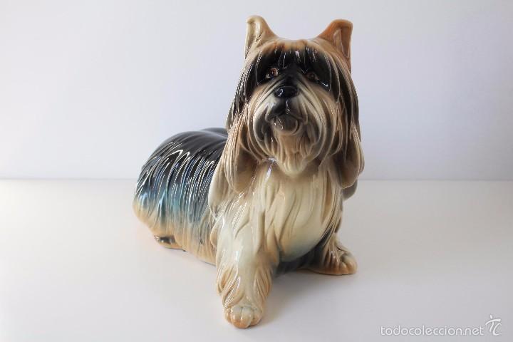Vintage: Perro Yorkshire porcelana ceramica esmaltada CH Hispania Manises - Foto 2 - 131945767