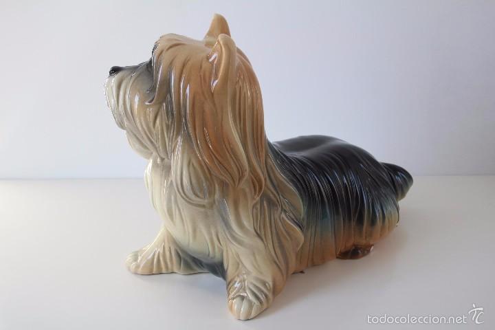 Vintage: Perro Yorkshire porcelana ceramica esmaltada CH Hispania Manises - Foto 3 - 131945767