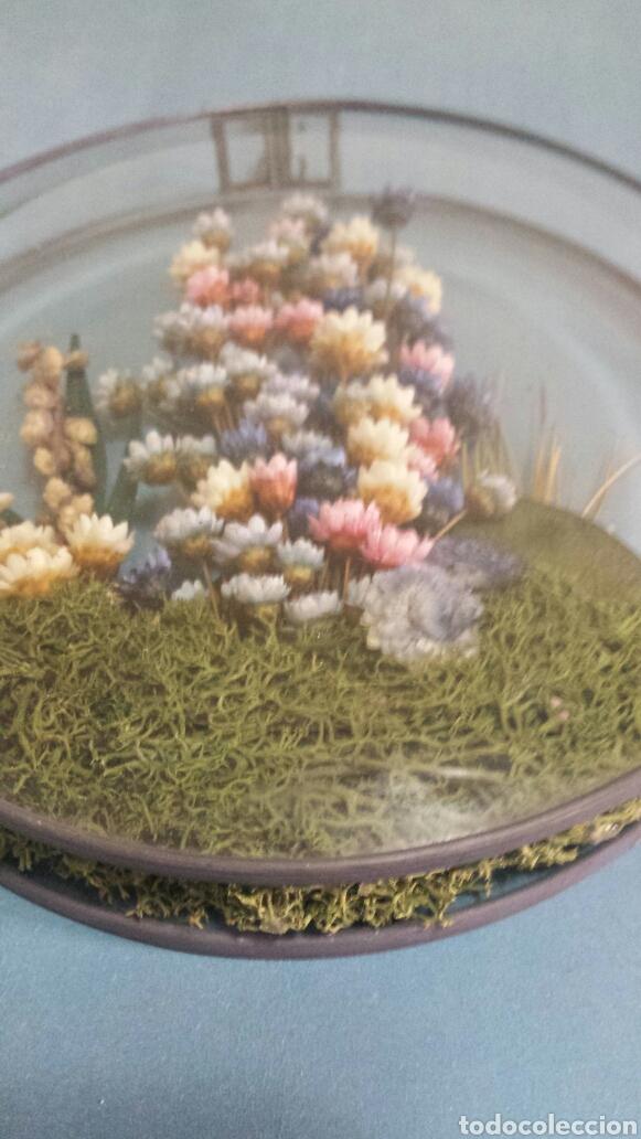 Vintage: Bello Encapsulado de flores secas naturales - Foto 2 - 78851694