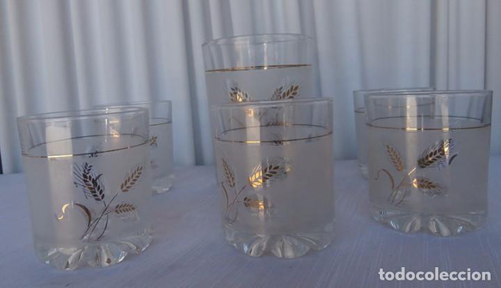 Juego De Cinco Vasos Cristal Decorado Y Cubitera Minibar