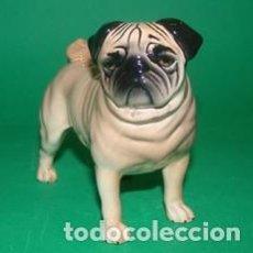 Vintage: PERRO CARLINO. FIGURA DE PORCELANA PEQUEÑA: 8 X 7 CM. BESWICK ENGLAND CH CUTMIL CUPIE. Lote 103534499