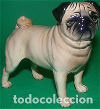 Vintage: PERRO CARLINO. FIGURA DE PORCELANA PEQUEÑA: 8 X 7 CM. BESWICK ENGLAND CH CUTMIL CUPIE - Foto 10 - 103534499