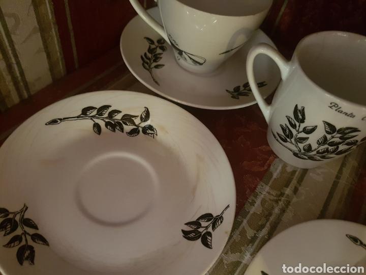 Vintage: Juego café Pontesa - Nescafé - Foto 5 - 118933287
