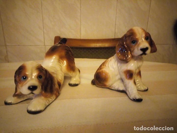 Vintage: Preciosa pareja de perros de cerámica,años 80 - Foto 2 - 152153614