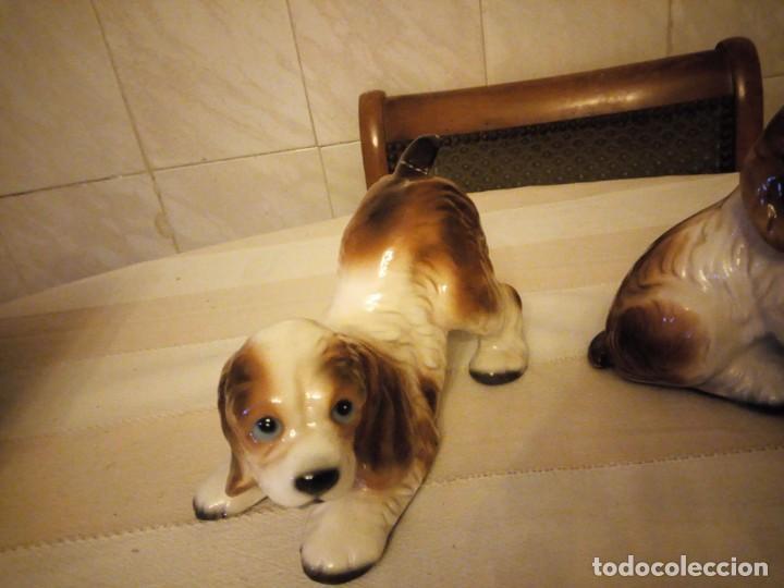 Vintage: Preciosa pareja de perros de cerámica,años 80 - Foto 4 - 152153614