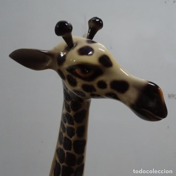 Vintage: Gran jirafa de cerámica.129 cm de alta.gran calidad. - Foto 6 - 156668686