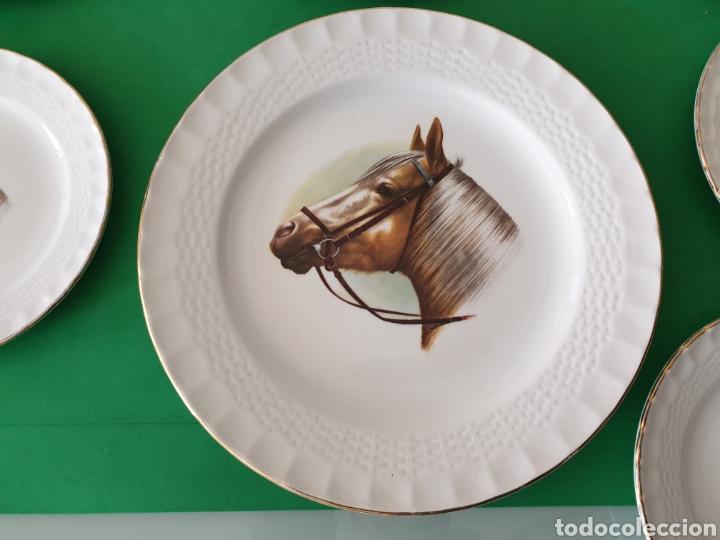 Vintage: Juego de porcelana Pontesa.Motivos caballos. - Foto 2 - 160266780