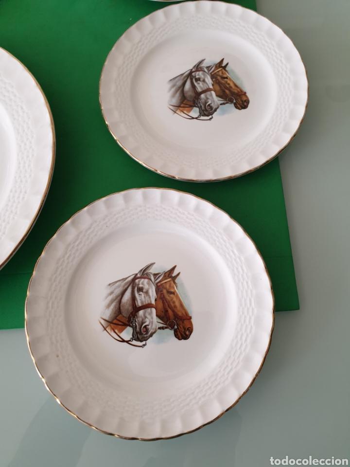 Vintage: Juego de porcelana Pontesa.Motivos caballos. - Foto 3 - 160266780