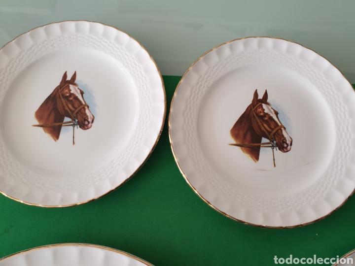Vintage: Juego de porcelana Pontesa.Motivos caballos. - Foto 5 - 160266780