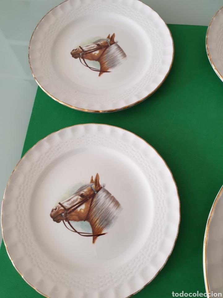 Vintage: Juego de porcelana Pontesa.Motivos caballos. - Foto 4 - 160266780