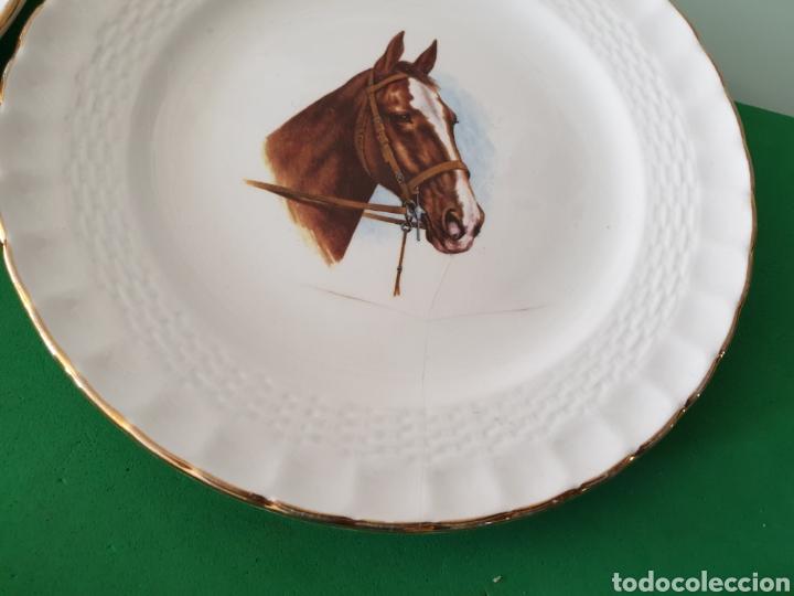 Vintage: Juego de porcelana Pontesa.Motivos caballos. - Foto 6 - 160266780