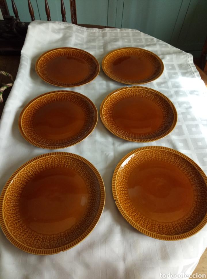 6 PLATOS LLANOS PONTESA COLOR CARAMELO (Vintage - Decoración - Porcelanas y Cerámicas)