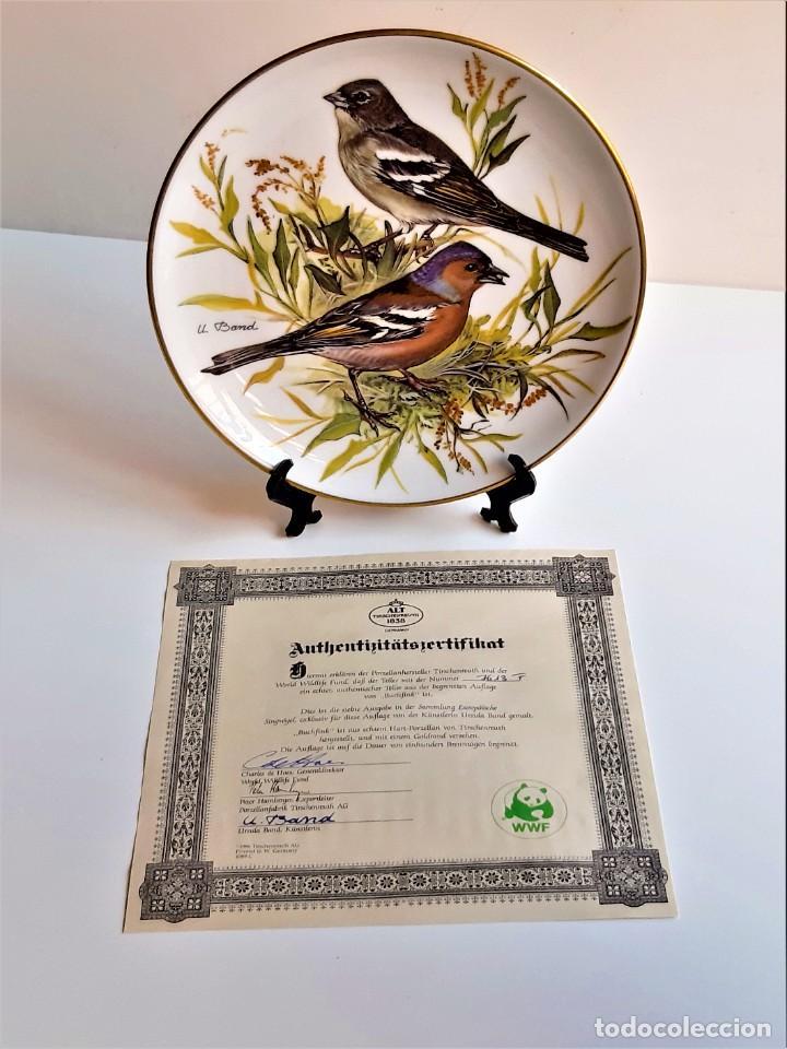 WWF PLATO DECORACION + CERTIFICADO FIRMADO Y NUMERADO - 20.CM DIAMETRO NUEVO EN CAJA (Vintage - Decoración - Porcelanas y Cerámicas)