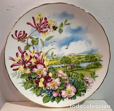 ROYAL ALBERT, PLATO DE PORCELANA. (Vintage - Decoración - Porcelanas y Cerámicas)