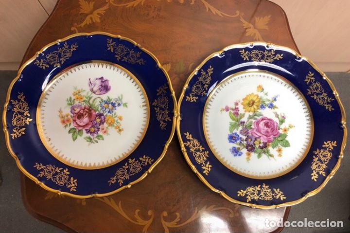 2 PLATOS DE PORCELANA COBALT (Vintage - Decoración - Porcelanas y Cerámicas)