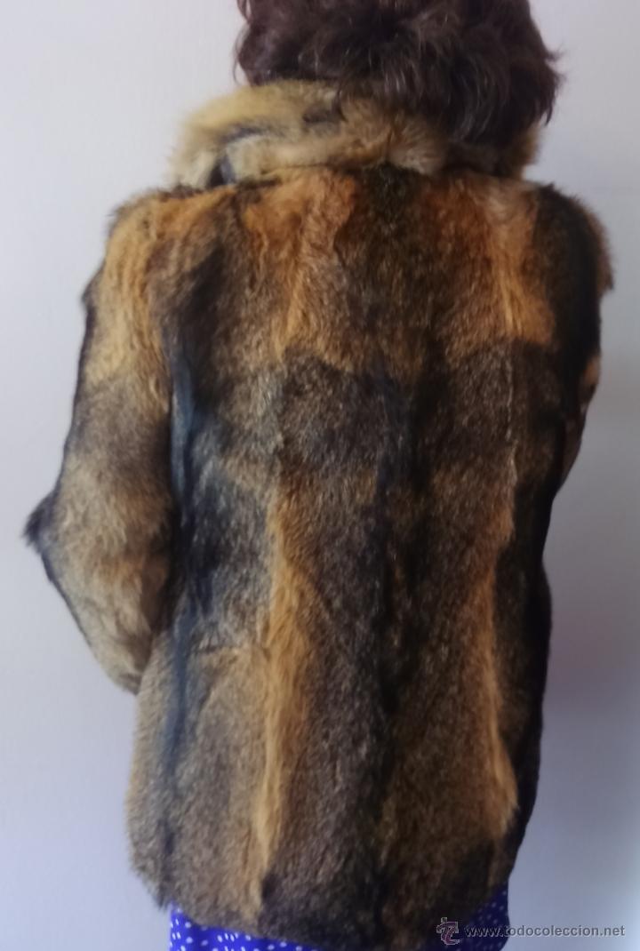 Abrigo zorro virginia