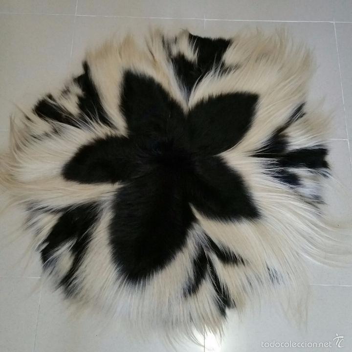 Fantastica pareja de pieles blanca y negra con comprar - Alfombra redonda pelo largo ...