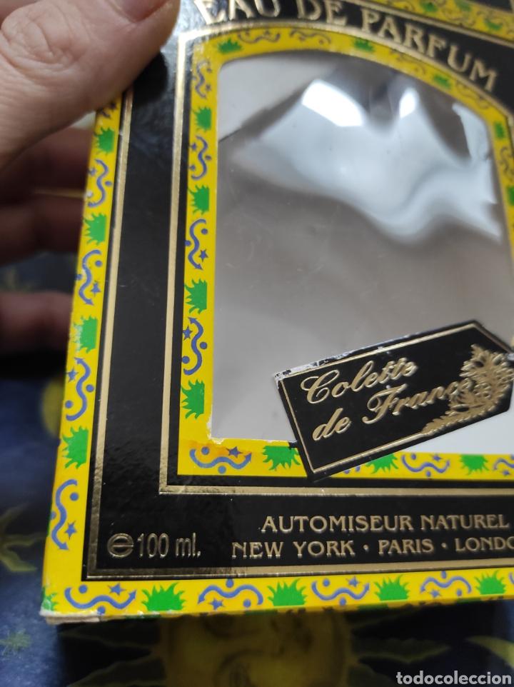 Vintage: EAU DE PARFUM, COLETTE DE FRANCE, 100ML, ISERNCOL - Foto 4 - 251522230