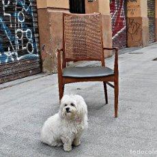 Vintage: SILLA- SILLON - BUTACA - MARCA GASISA VINTAGE. Lote 113478827