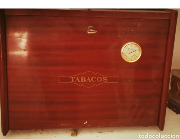 MUEBLE PARA TABACO (Vintage - Muebles)