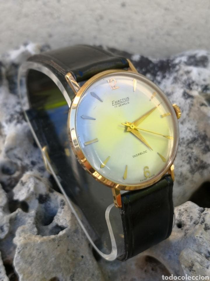 Vintage: ✨C1/5 Reloj vintage Exactus Cuerda NUEVO - Foto 5 - 195386790