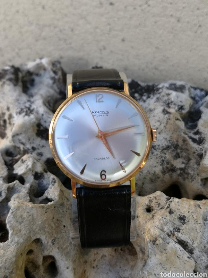 Vintage: ✨C1/5 Reloj vintage Exactus Cuerda NUEVO - Foto 7 - 195386790