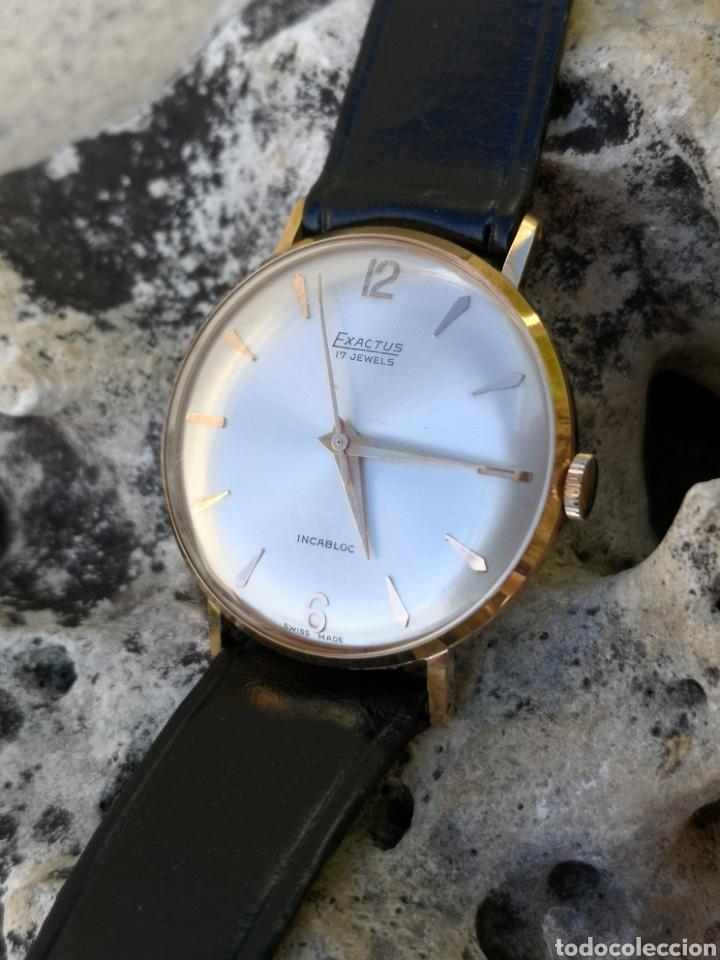 Vintage: ✨C1/5 Reloj vintage Exactus Cuerda NUEVO - Foto 8 - 195386790