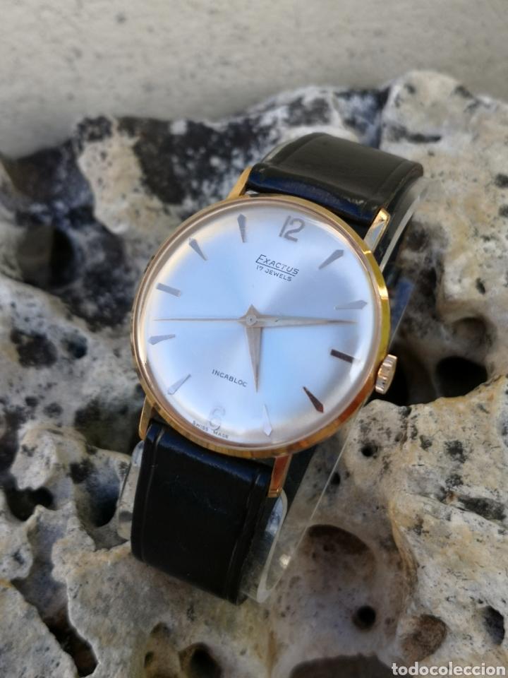 ✨C1/5 RELOJ VINTAGE EXACTUS CUERDA NUEVO (Relojes - Relojes Vintage )