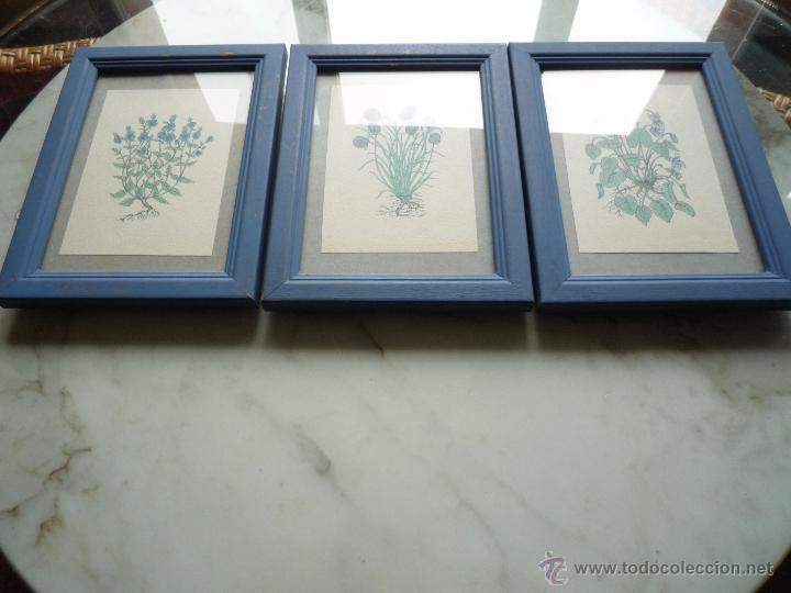 conjunto vintage 3 cuadros láminas dibujos plan - Comprar en ...