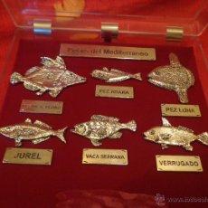 Vintage: CAJA EXPOSITORA DE PECES DEL MEDITERRANEO. Lote 50623094